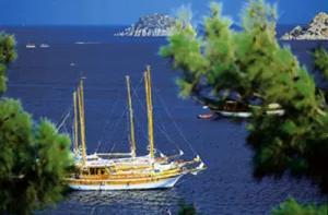 Ayvalık Tekne Turu boat trip